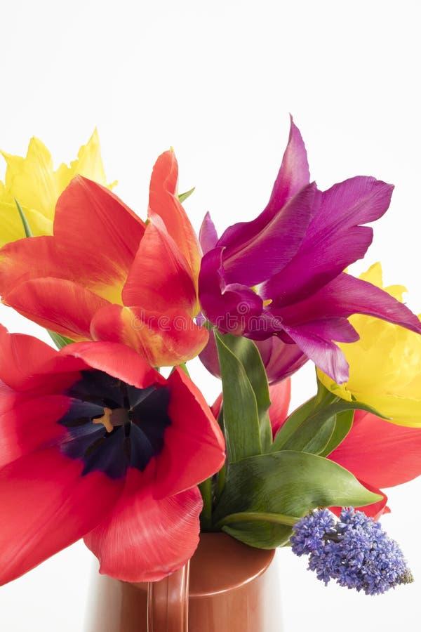 Szczegół wiązka kolorowi tulipany i muscari umieszczający na wodzie obraz stock