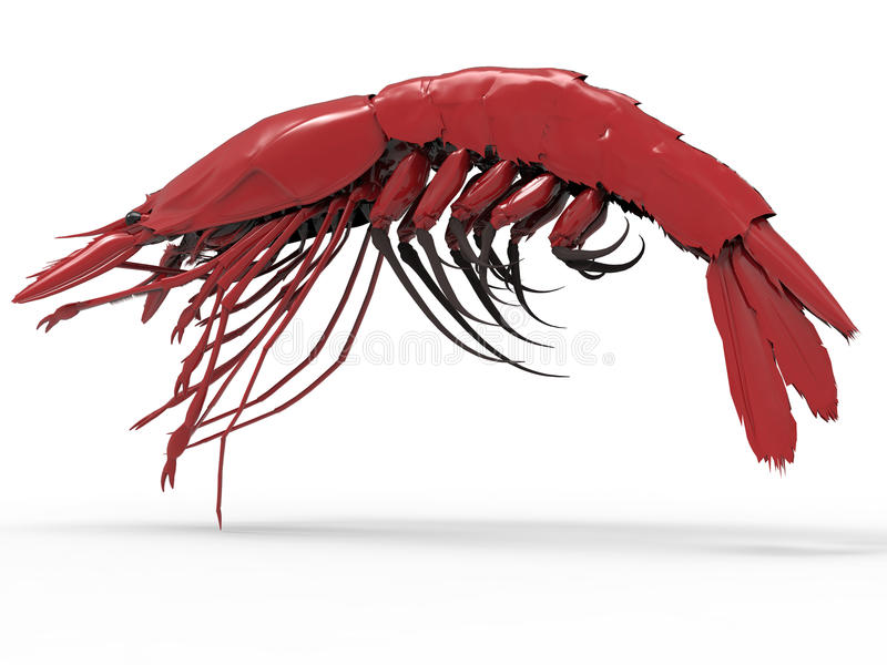Szczegółowy homar ilustracja wektor