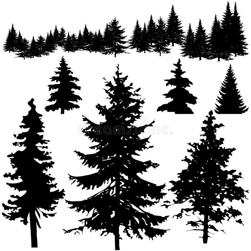 szczegółowy sosnowy sillhouettes drzewo vectoral royalty ilustracja
