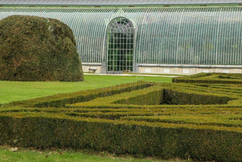 Szczegółu obrazek żywy ogrodzenie z szkło domem obrazy stock