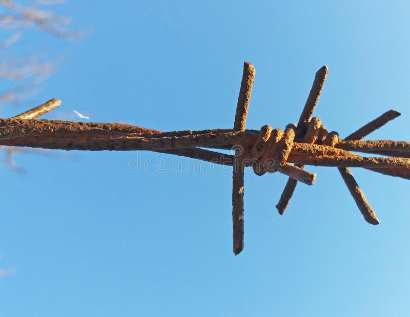 Szczegółu ogrodzenie z drutem kolczastym obrazy royalty free