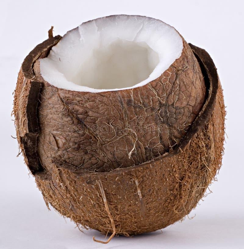 szczegóły kokosowy otwarte obraz stock