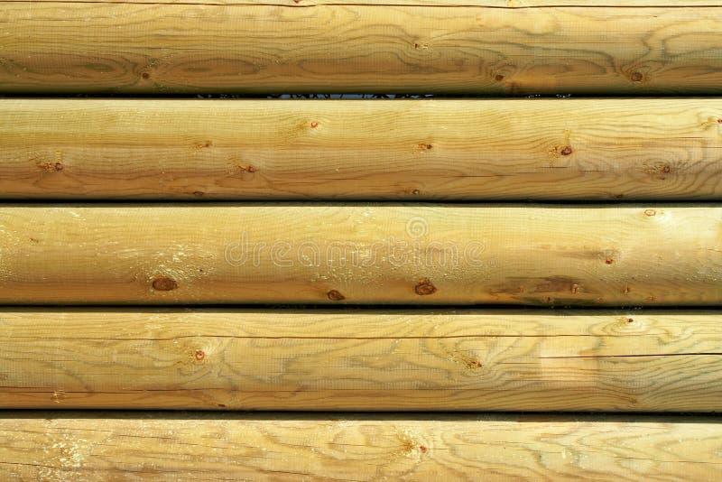 szczegóły odizolowanego drewna obrazy stock