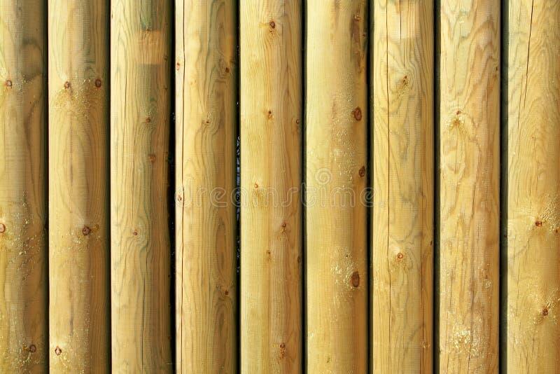 szczegóły odizolowanego drewna zdjęcia royalty free