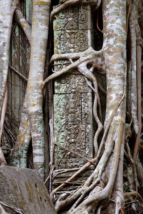 Szczegóły ruiny przy Beng Mealea świątynią, Angkor Wat, Kambodża fotografia stock