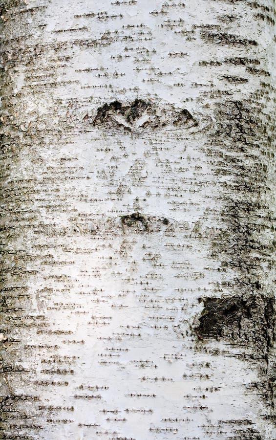 Szczeg?? drzewna barkentyna obrazy stock