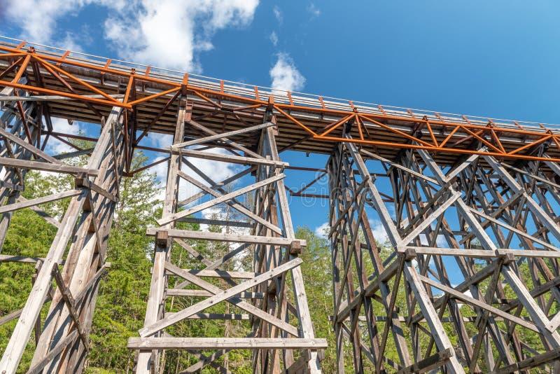 Szczeg?? Kinsol koby?ki linii kolejowej drewniany most w Vancouver wyspie Kanada, BC fotografia stock