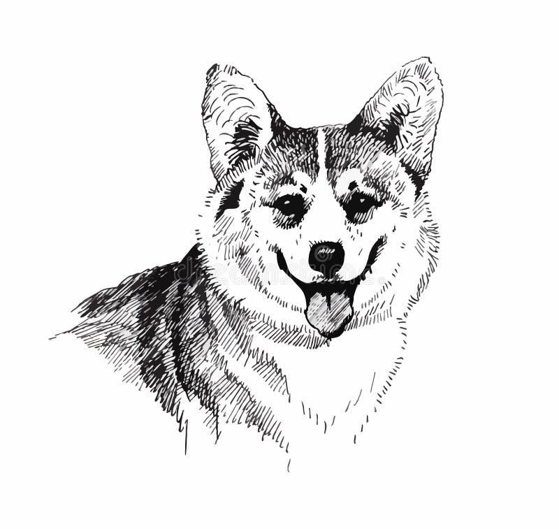 Szczeniaka psa ręka rysująca, czarny i biały ilustracyjny nakreślenie ilustracji