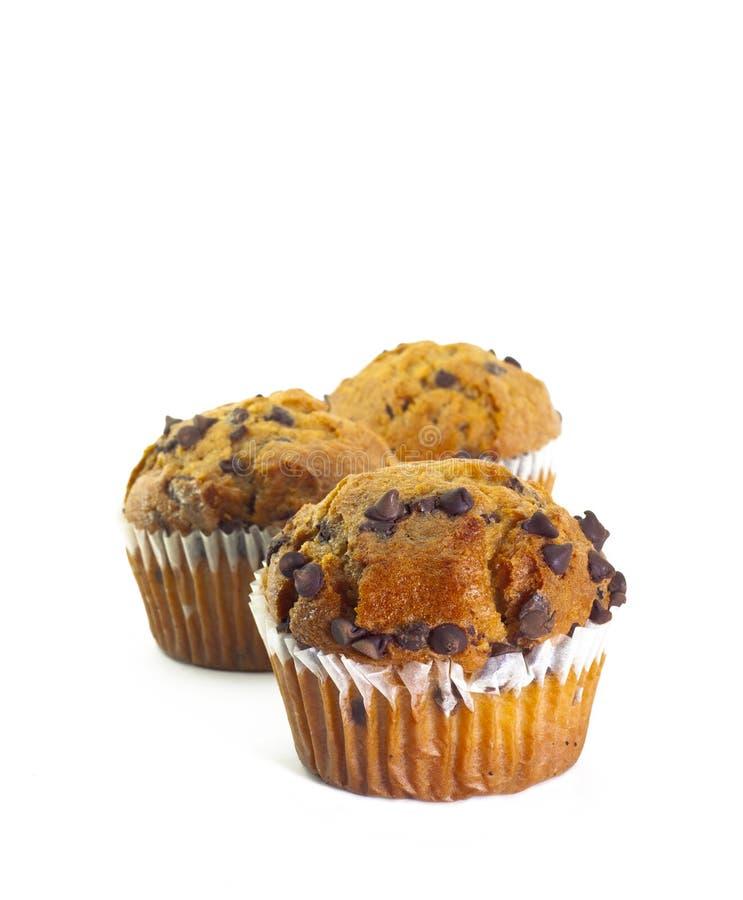 szczerbi się czekoladowych muffins zdjęcie stock