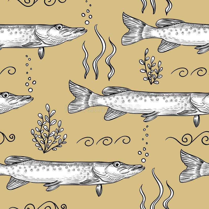 szczupak Bezszwowy wzór szczupak royalty ilustracja