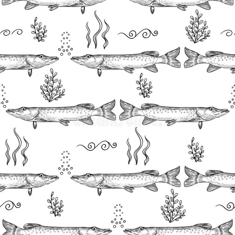 szczupak Bezszwowy wzór szczupak Ręka rysujący nakreślenie ilustracja wektor