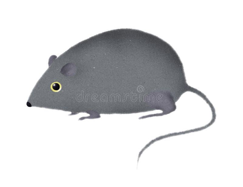 szczur stylizujący mysz zdjęcie stock