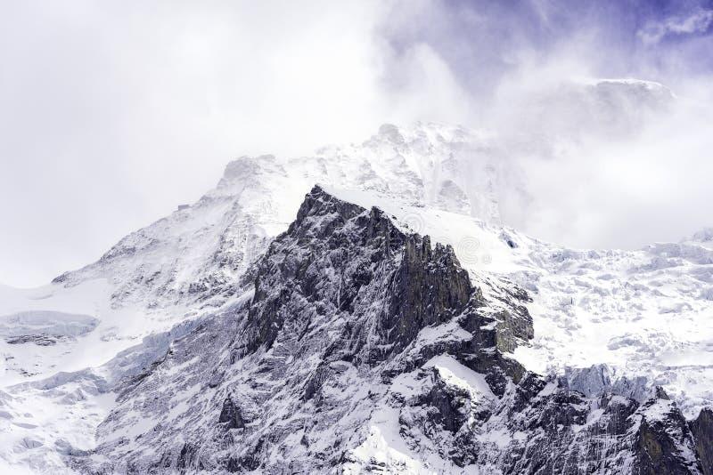 Szczyty Jungfrau zdjęcie royalty free