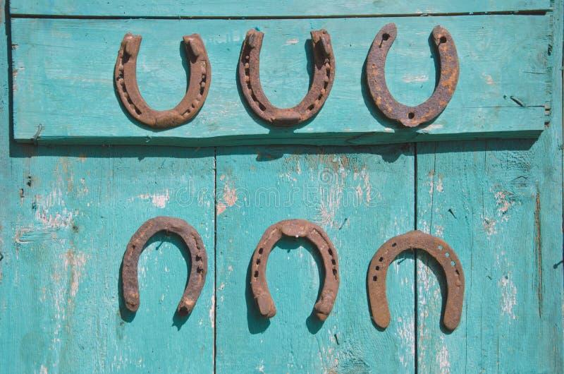 Sześć antykwarskich ośniedziałych podków na drewnianym drzwi obraz stock