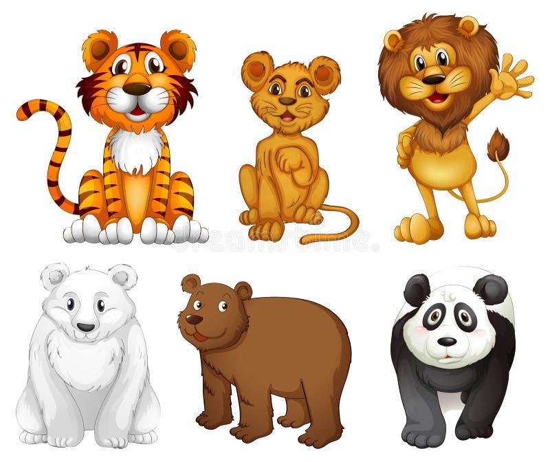 Sześć dzikich zwierząt royalty ilustracja