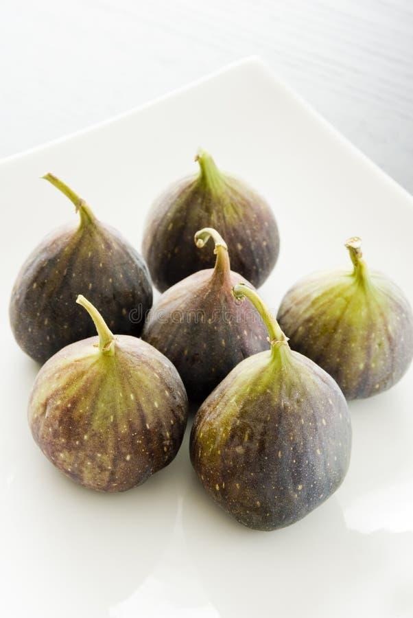 Sześć fig owoc na białym talerzu obraz royalty free