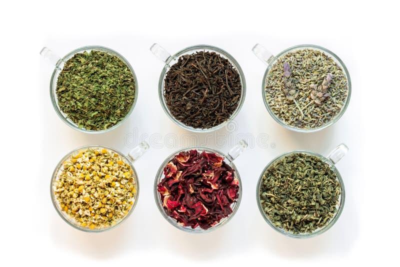 Sześć filiżanek z różnymi herbacianymi liśćmi odizolowywającymi na białym tle obraz stock