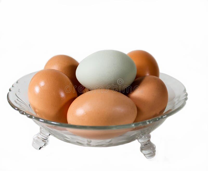 Sześć jajek W Szklanym pucharze obrazy stock