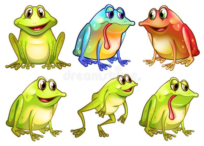 Sześć różnych żab ilustracja wektor
