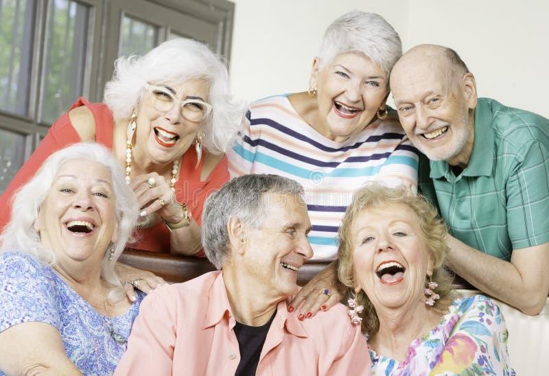 Sześć Roześmianych Starszych przyjaciół w żywym pokoju obrazy royalty free