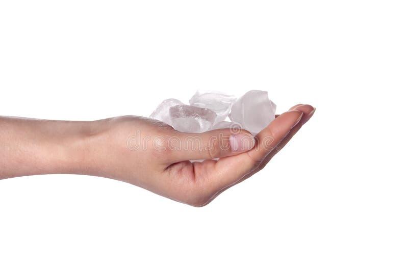 sześcianów ręki mienia lodu kobieta zdjęcia stock