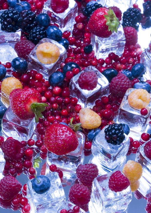 sześcian owoców podobszaru ices małego zdjęcie royalty free