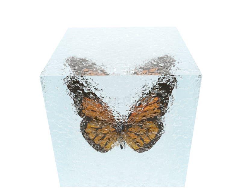 sześcianu motyli lód ilustracji