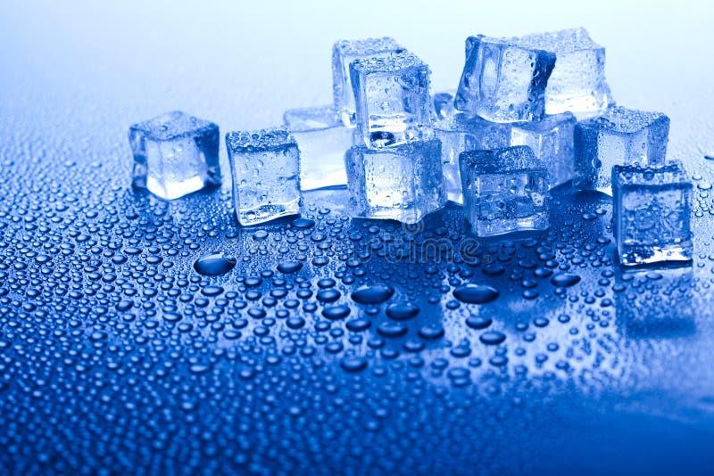 Sześciany lodu, zimnego i świeżego pojęcie, fotografia royalty free