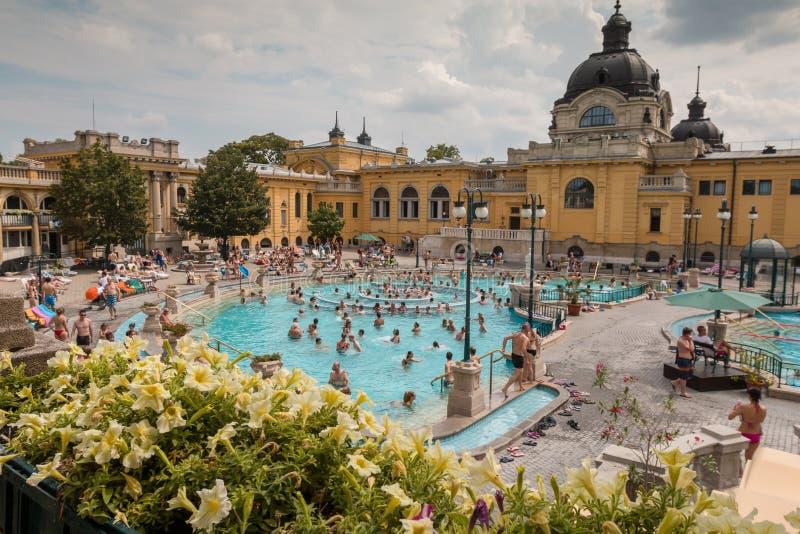 Szechenyi热量巴恩,布达佩斯匈牙利 免版税库存图片