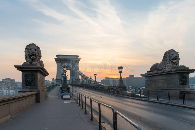 Szechenyi bro i den Budapest Ungern Härliga Danube River förtöjd sikt för nattportship royaltyfri foto