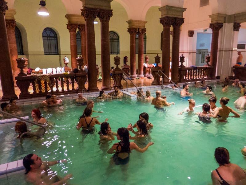 Szechenyi termiskt bad, inomhus pöl royaltyfri fotografi