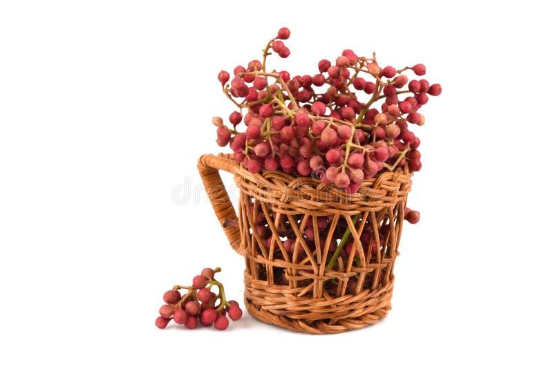 Szechuan胡椒,四川胡椒,茴香胡椒,中国胡椒,日本胡椒:果子 免版税图库摄影