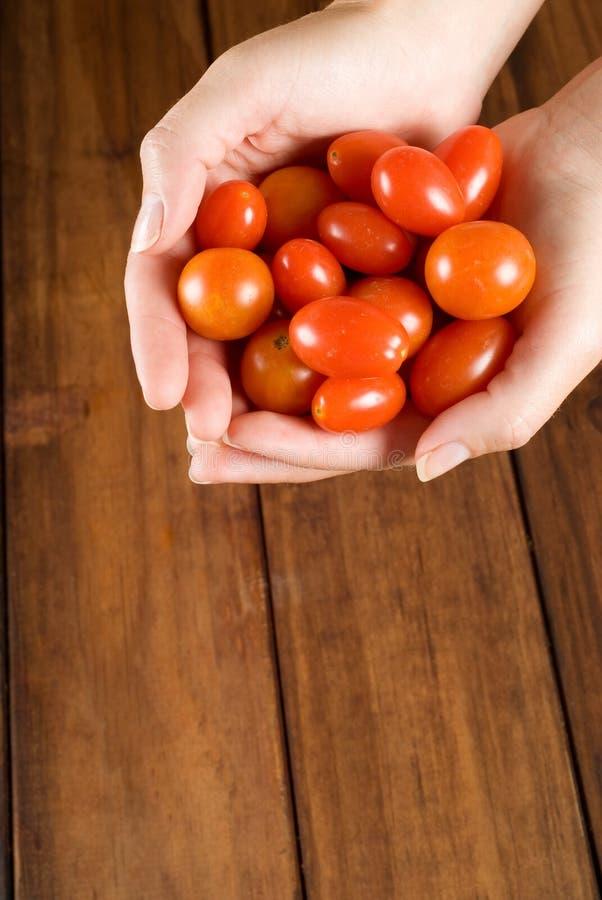 szef kuchni wręcza mienia pomidorów kobiety obrazy stock