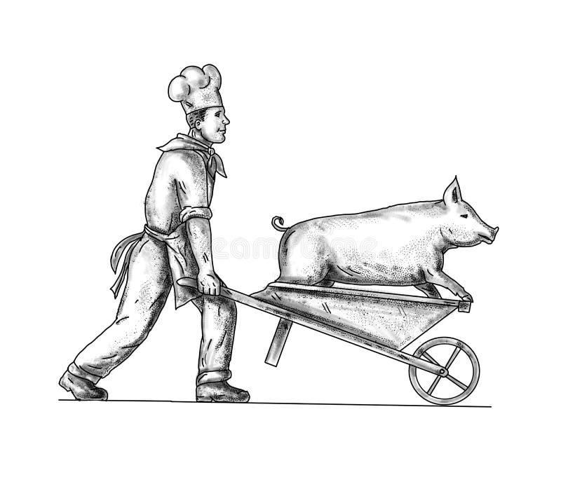 Szef kuchni Z Wheelbarrow i Świniowatym tatuażem ilustracja wektor