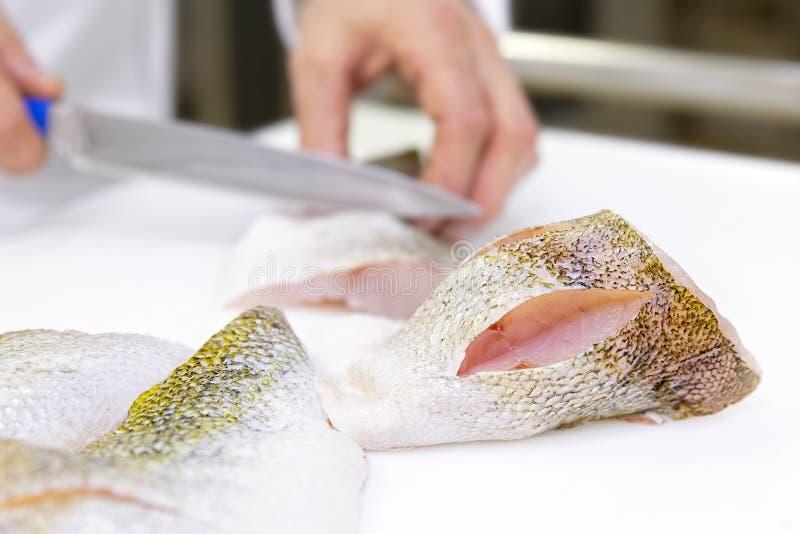 Szef kuchni zdobywa punkty zander rybiego przepasuje z nożem Biały choppin obrazy stock