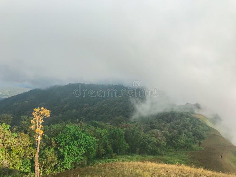 Szene und großer Felsen auf die Oberseite des Berges an Chaing MAI, Thailand lizenzfreie stockfotos