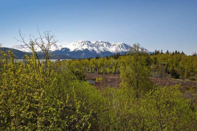 Szenische alaskische Wildnis stockfotos
