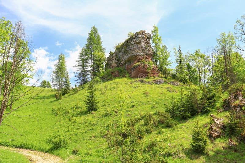 Szenische Ansicht der Pieniny-Gebirgsreserve in Polen stockbild