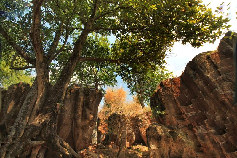 Szenische Ansicht der Stechpalmenhöhle in tuban Osttimor Indonesien stockbilder