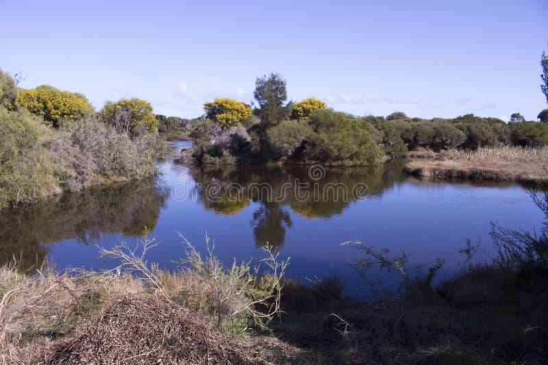 Szenische Ansicht des blauen Sees im Großen Sumpf Bunbury West-Australien im Frühjahr lizenzfreie stockfotografie