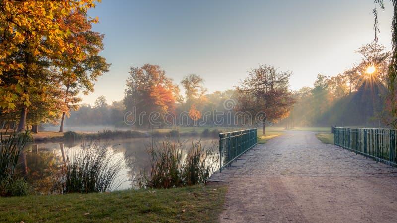 Szenische Ansicht des Stromovka-Stadtparks in Prag, Tschechische Republik Bunte herbstliche Blätter auf Bäumen und Fußweg über ei lizenzfreie stockfotos