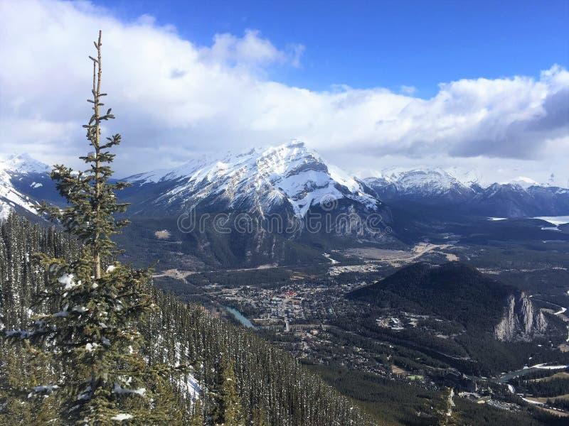 Szenische Ansicht von Banff vom Schwefel-Berg mit Pinetree, Nationalpark Banffs stockbild