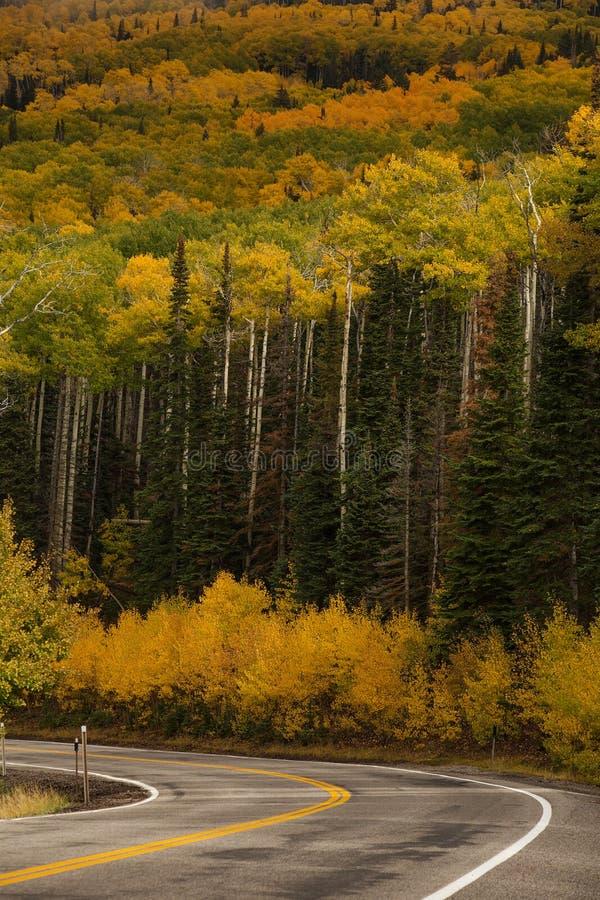 Szenische Ansicht zu den Hochl?ndern auf dem Seitenweg 12 in Utah, USA lizenzfreie stockbilder