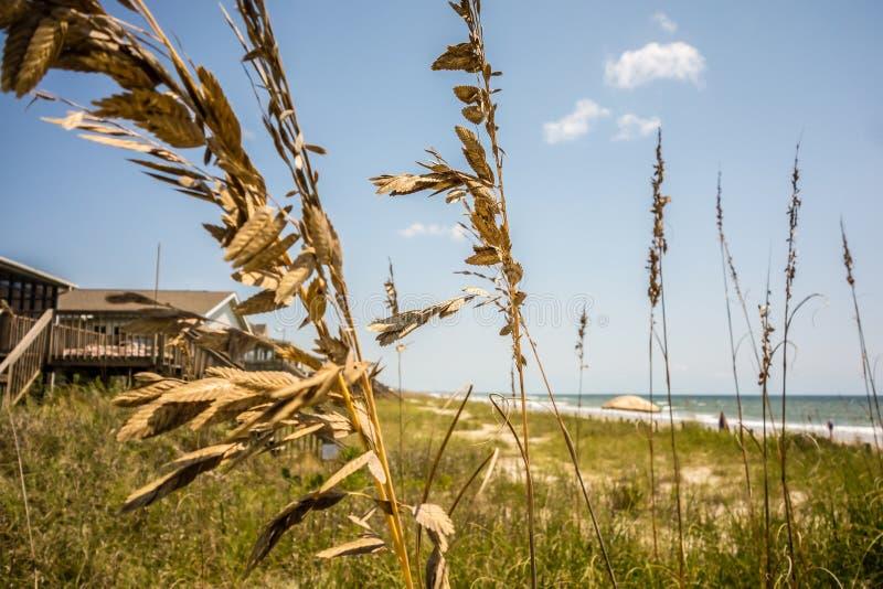 Szenische Ansichten am Eicheninselstrand Nord-Carolina lizenzfreie stockfotografie