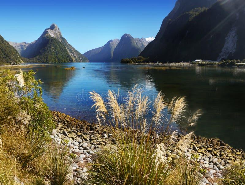 Szenische Fjord Landschaft Neuseelands, Milford Sound lizenzfreie stockfotos