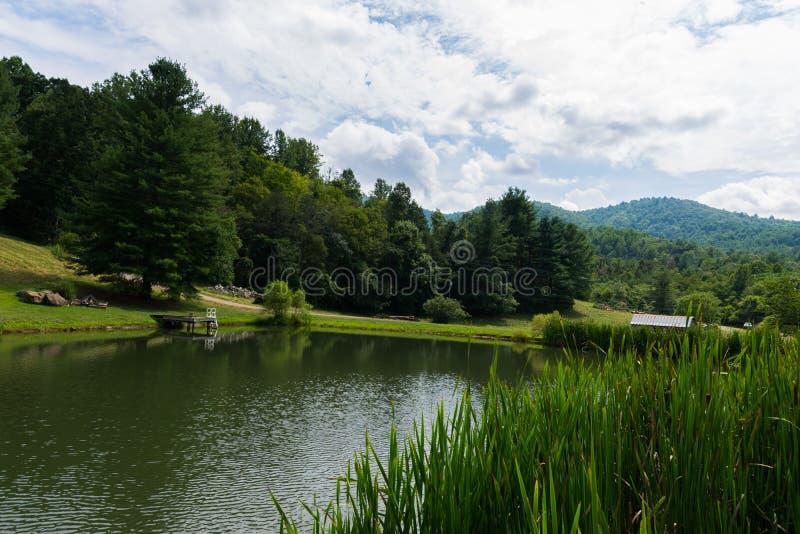 Szenische Landschaft von Elkton, Virginia um Shenandoah-Staatsangehörigen lizenzfreie stockbilder