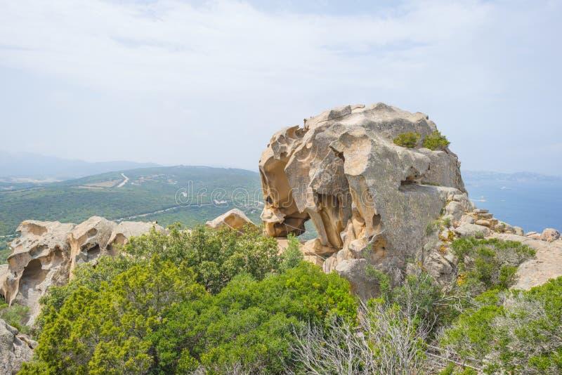 Szenische Landschaft von grünen Hügeln und von felsigen Bergen der Insel von Sardinien stockbilder