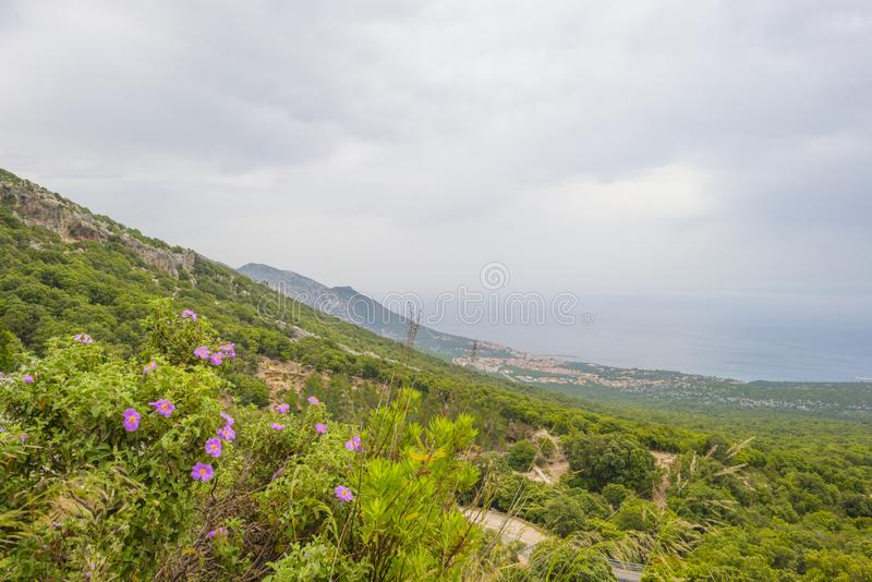 Szenische Landschaft von grünen Hügeln und von felsigen Bergen der Insel von Sardinien stockfotos