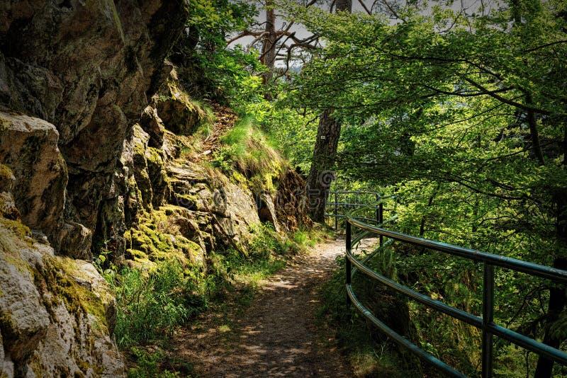 Szenische Landschaftslandschaft im Schwarzwald: durch grünen Wald mit erstaunlichen Ansichten im Frühjahr wandern nahe lizenzfreie stockfotos