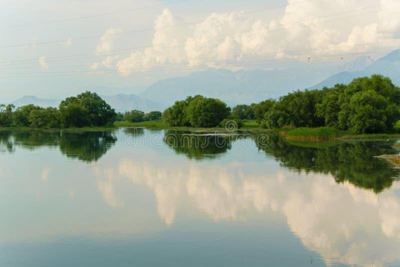 Szenische Sommerlandschaft des ruhigen Wassers des Sees von Shkodra lizenzfreies stockbild